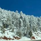Taking a Trip to the town of Pine, Arizona